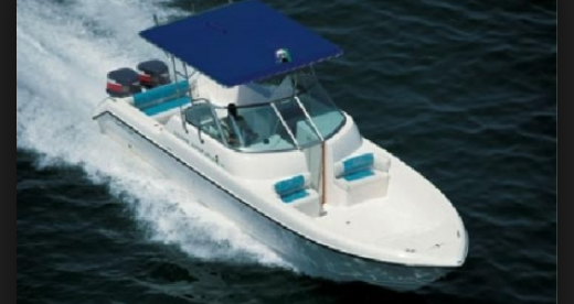 dolphin_boats_ltd